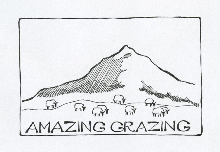 Amazing Grazing Logo Med Ramme