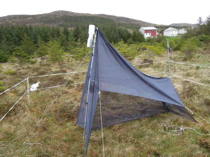 Insektfelle ute på forskningsfelt (Foto: Atle Wibe)