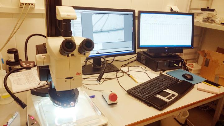 Utstyr for undersøkelser av røtter ved NIBIO avdeling Tingvoll.  (Foto: Anne de Boer, NIBIO)