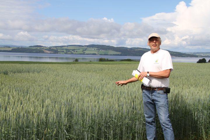 Jon Arne Dieseth, mannen bak kornsorter som Seniorita og Mirakel, mener at landbruket vil tjene på å ta vare på gener fra gamle kornsorter, men også å kombinere disse med nye, for landbruket er avhengig av at foredlere utvikler nye sorter (Foto: Eva Pauline Hedegart)