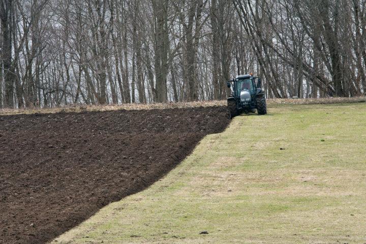 Naken jord øker faren for nitrat-utvasking betydelig, spesielt om det etterfølges av nedbørrike perioder uten plantevekst.  (Foto: Anita Land)