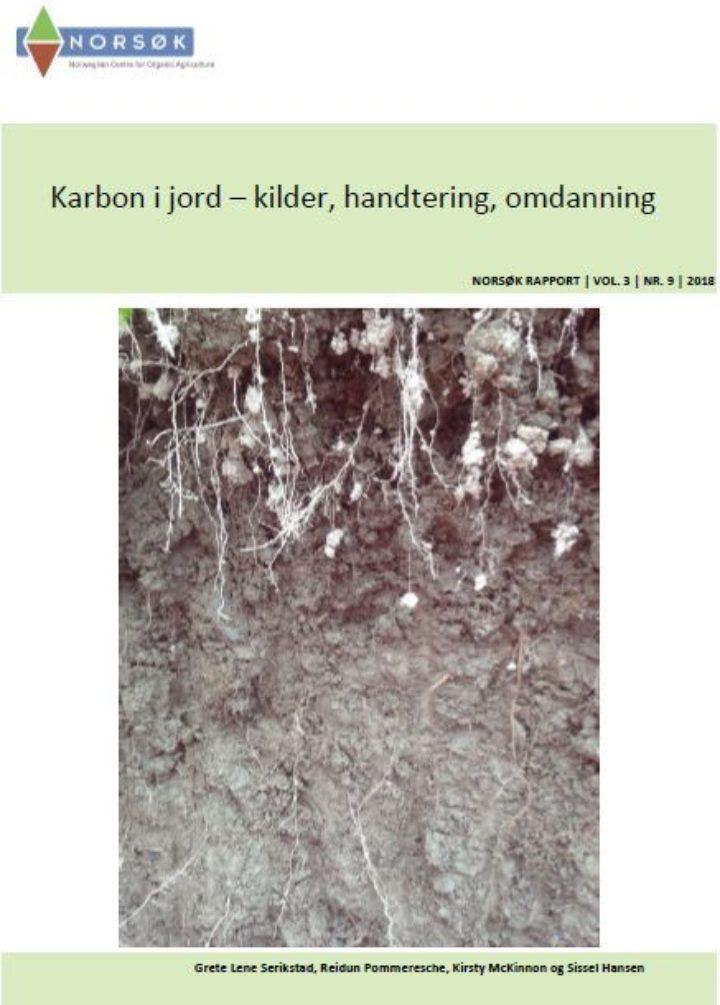 Rapport Karbon I Jord