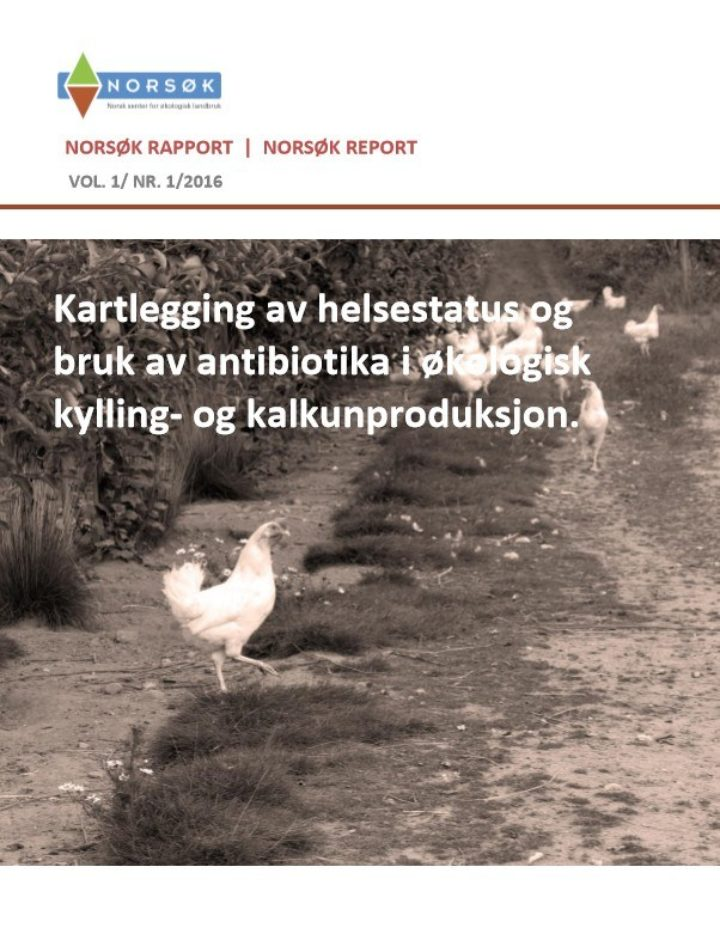 Rapport Norsok 1 2016