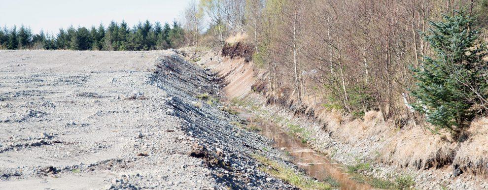 Omgraving av myr (Foto: Sissel Hansen)