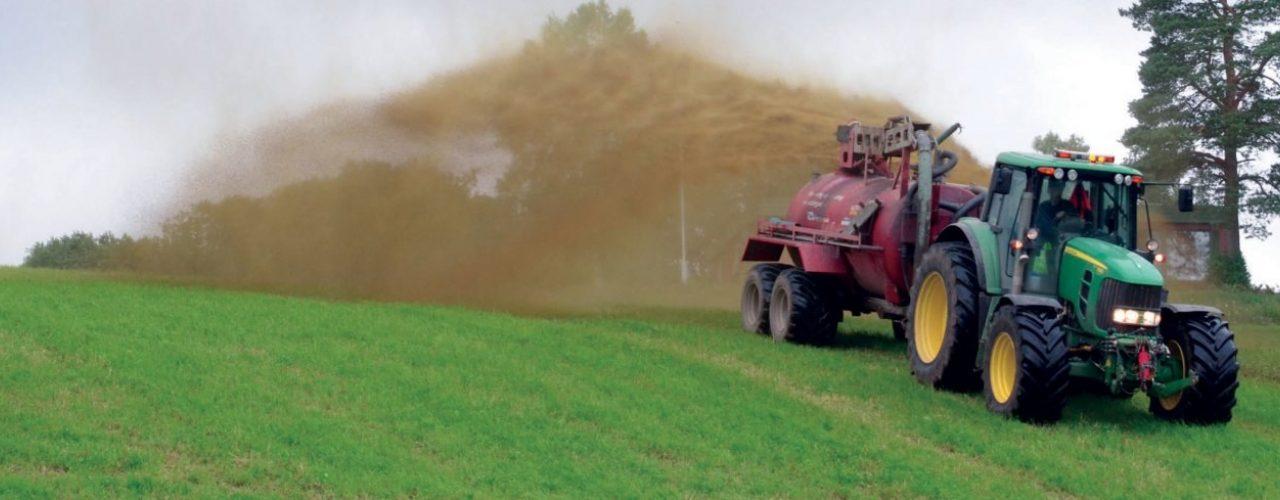 Når bonden gjødsler åkeren med møkk fra husdyr, forsvinner noe av nitrogenet fra gjødsla ut i lufta. Da forsvinner viktig næring som kunne gått til plantene. Hvordan kan vi unngå det? (Foto: Stian Sørensen)