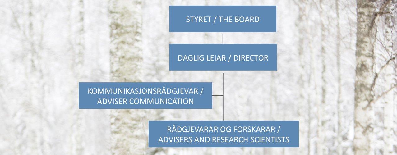 Organisasjonskart Top