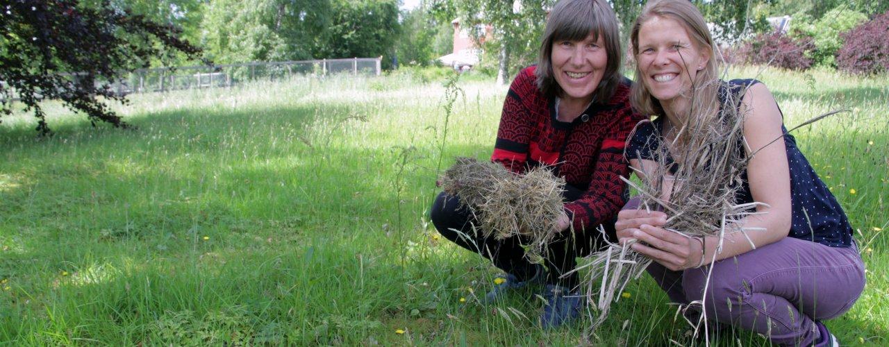 Forskerne Sissel Hansen og Tatiana Rittl vil gjennom prosjektet  ResidueGas se på en ny metodikk får å estimere N2O utslipp fra jord som har blitt tilført planterester.   (Foto: Anita Land)