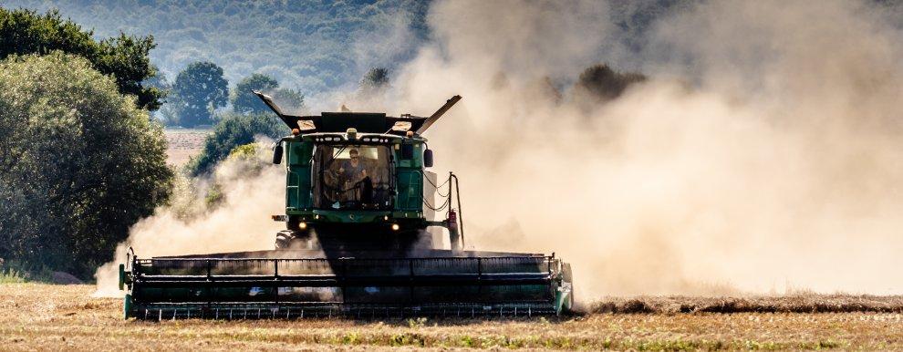 Skurtresker under høsting (Foto: Ermell)