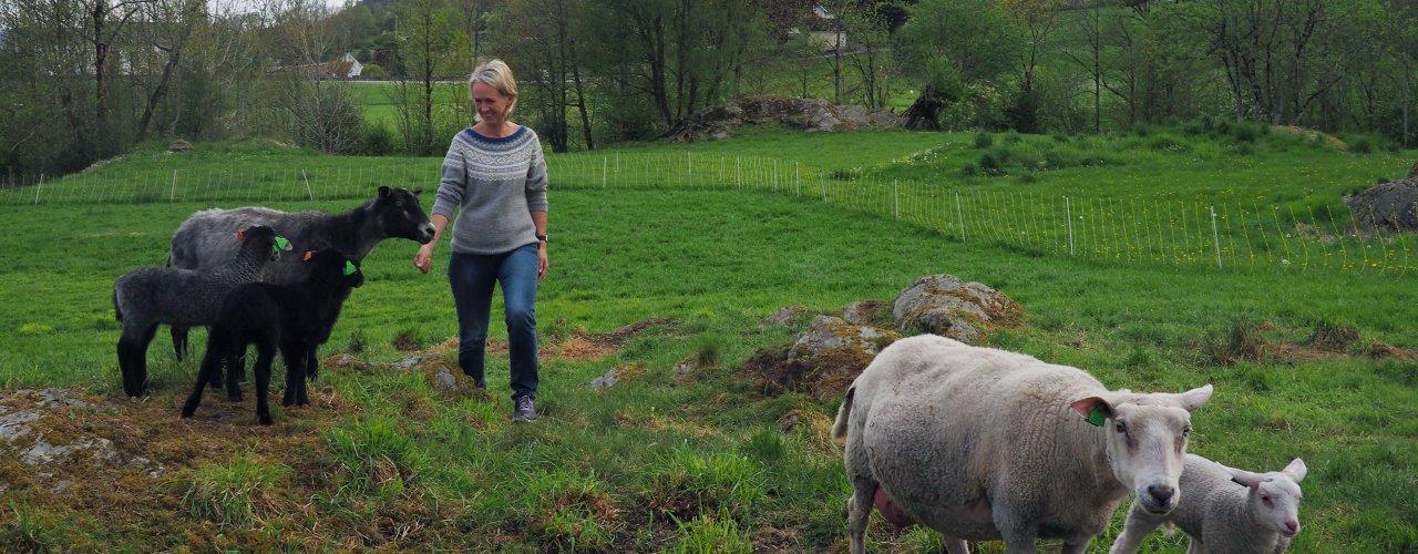 Kjersti Berge er fagkoordinator økologisk i Norsk Landbruksrådgiving (NLR) og leder av hovedkomiteen for Øko 2020.  (Foto: Ronja Svenning Berge)