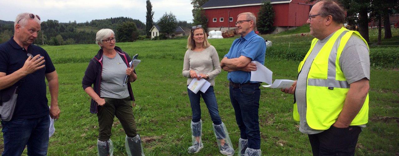 Fra venstre Per Møllerhagen, NIBIO Apelsvoll- Olaug Bach NLR Trøndelag- Gunhild Halvorsen FMLA Trøndelag-Jostein Trøite, kårkall og leder av Økologisk Norge, og Elling Munkeby, potetdyrker i Levanger  (Foto: Anne- Kristin Løes)